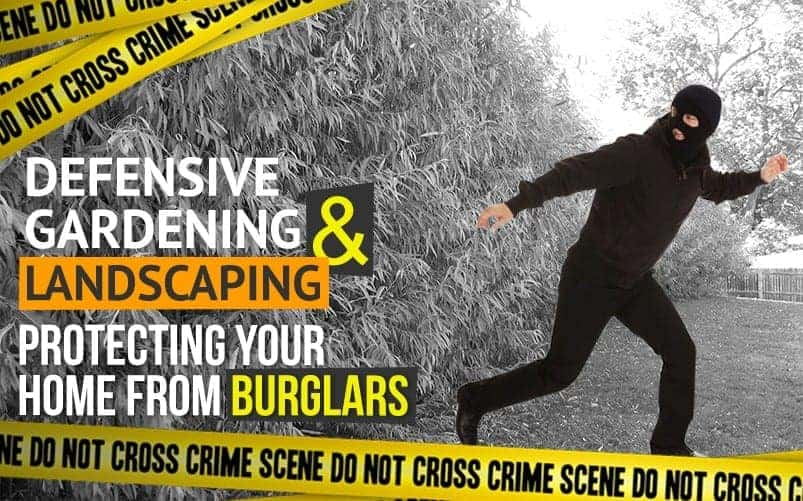 Article12A Defensive Gardening and Landscaping: Protecting Your Home from Burglars