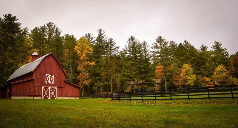100-cabin-transformation-ideas-23-backyard-barn-storage