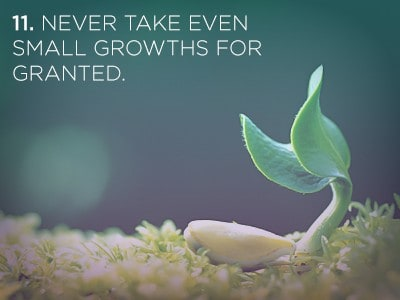 111 1 21 Life Lessons We Can Learn from Plants