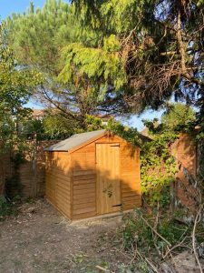 BillyOh shed in a garden corner under trees with fading sunlight on it