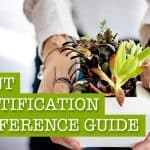 Your Ultimate Plant Identification & Useful Reference Guide