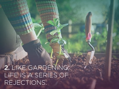 24 1 21 Life Lessons We Can Learn from Plants