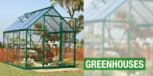 Greenhouses with a glass greenhouse in a garden
