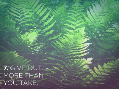 7 1 21 Life Lessons We Can Learn from Plants