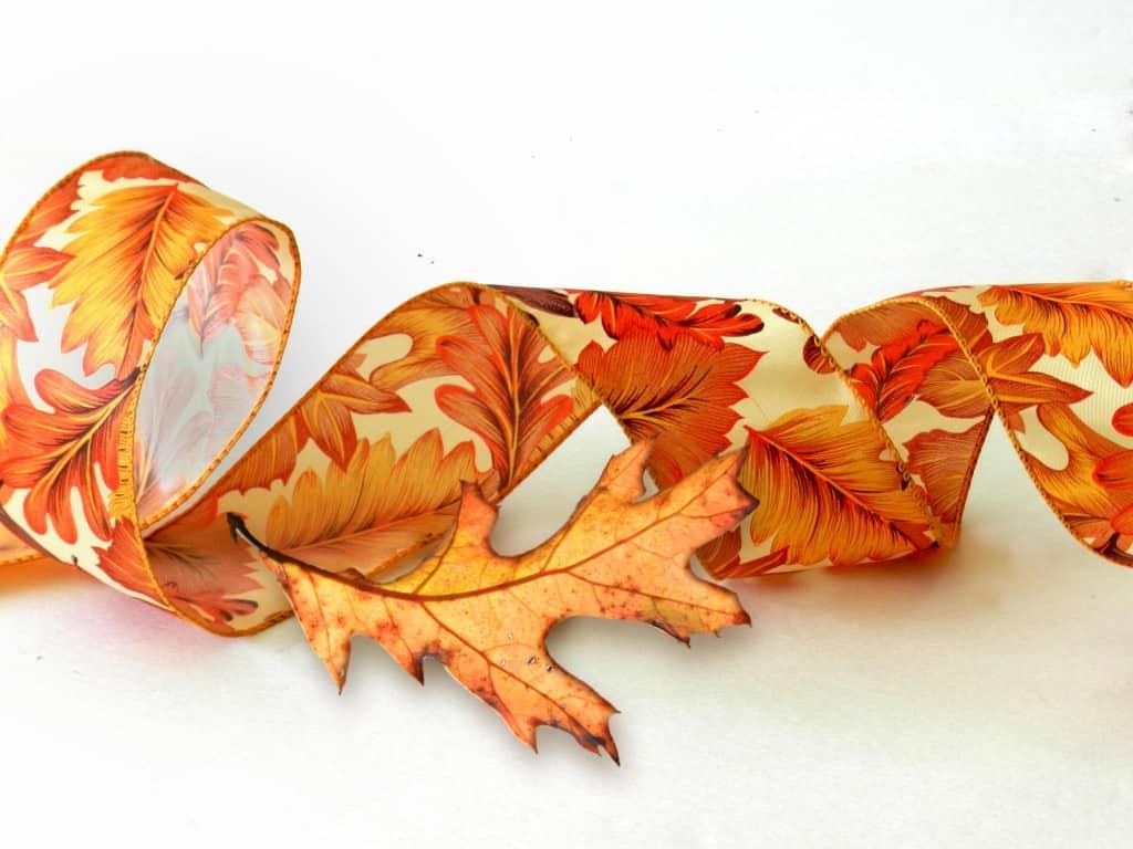 DSCN5929 Preserving Autumn Leaves