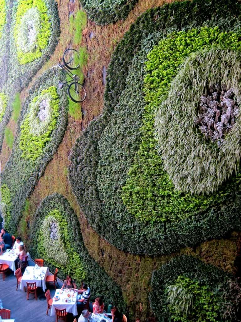 IMG 2140 5 Amazing Vertical Gardens