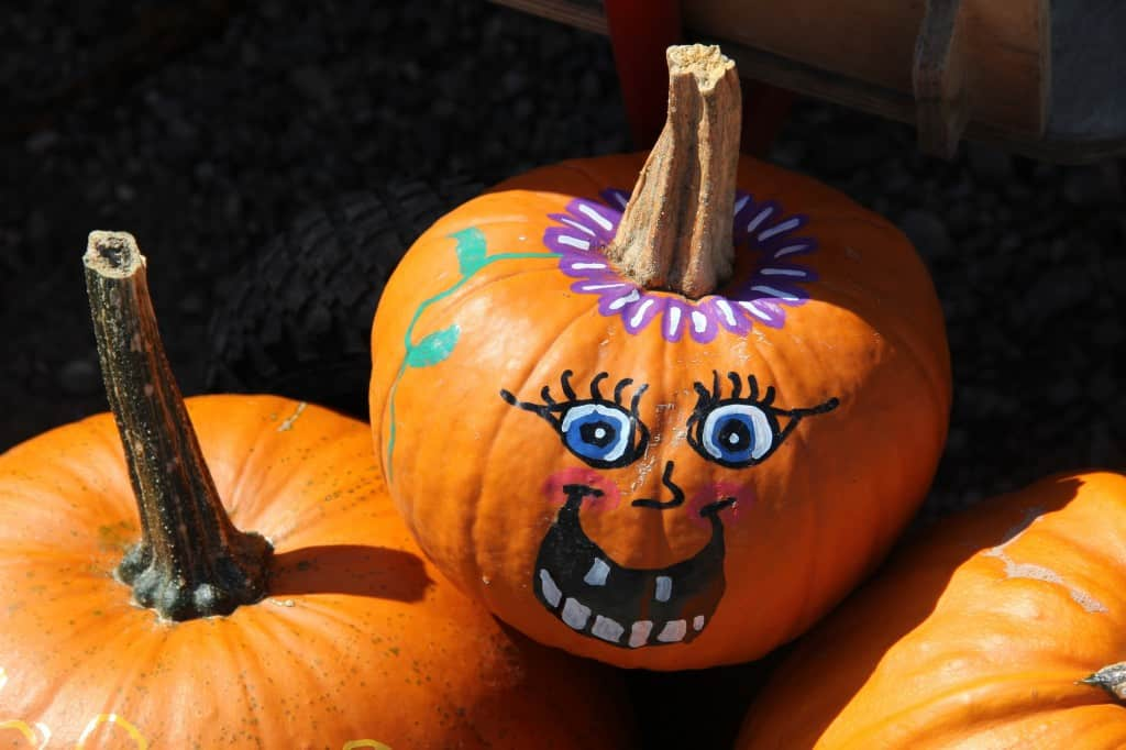Mering painted pumpkins and squashes 002 1 How to decorate your playhouse for Halloween