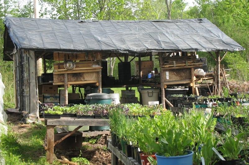 Potting shed shed blog garden buildings direct for Potting shed plans diy blueprints