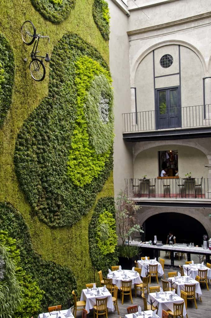 Padrinos at 30 Isabel la Catolica Mexico 5 Amazing Vertical Gardens