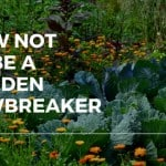 How Not To Be A Garden Lawbreaker