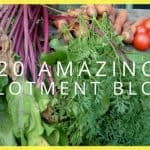 20 Amazing Allotment Blogs