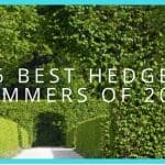 6 Best Hedge Trimmers You Can Buy