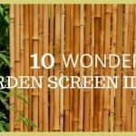 Garden Screening: 10 Wonderful Ideas