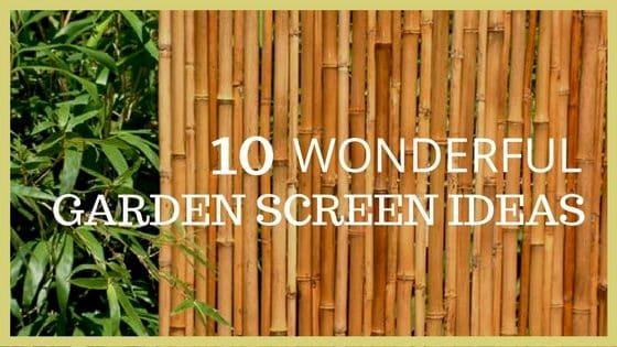 Garden Screening 10 Wonderful Ideas