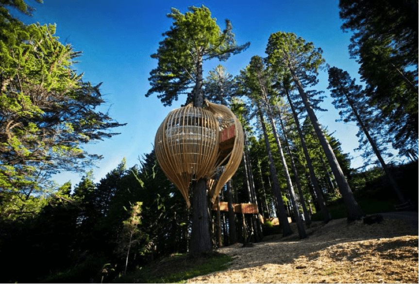Redwoods Top Tree Houses – The world's 15 Most Amazing Tree Dwellings