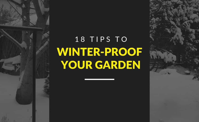 18 Top Tips to Winter-Proof Your Garden