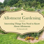 allotment gardening banner photo 150x150 Allotments 101: A Guide To Getting An Allotment
