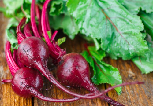beets 10 Vegetables To Plant Now and Eat as an Exciting Winter Meal [Updated]