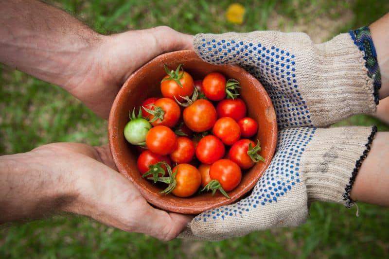best-kids-outdoor-activities-6-gardening