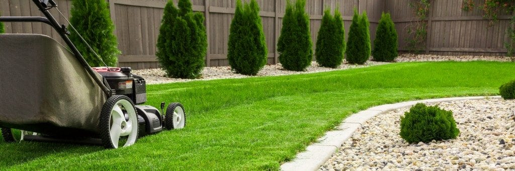 Best Lawn Mowers 2018