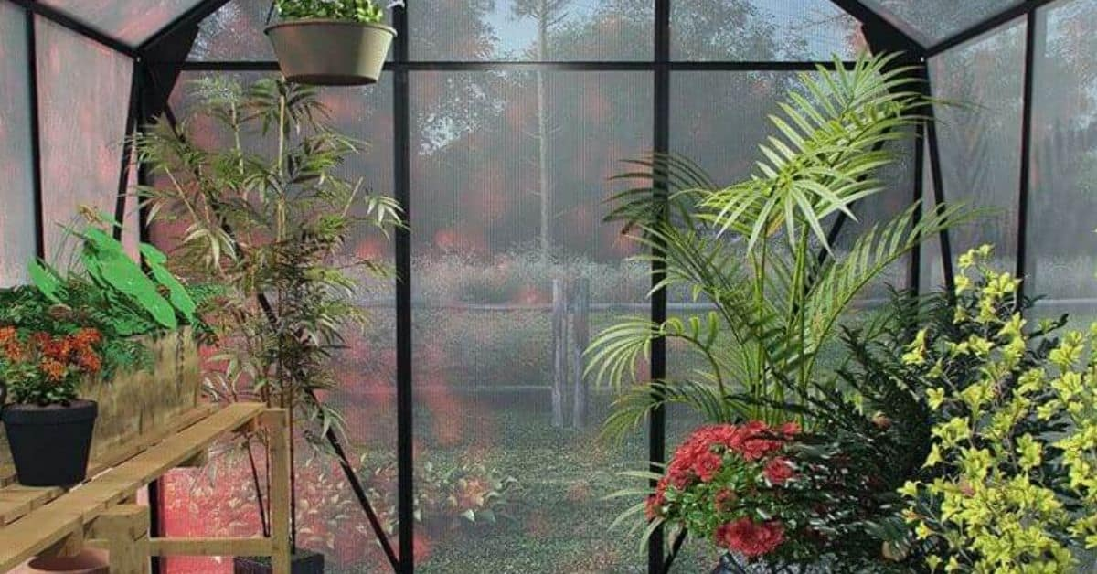 Greenhouse heating this winter