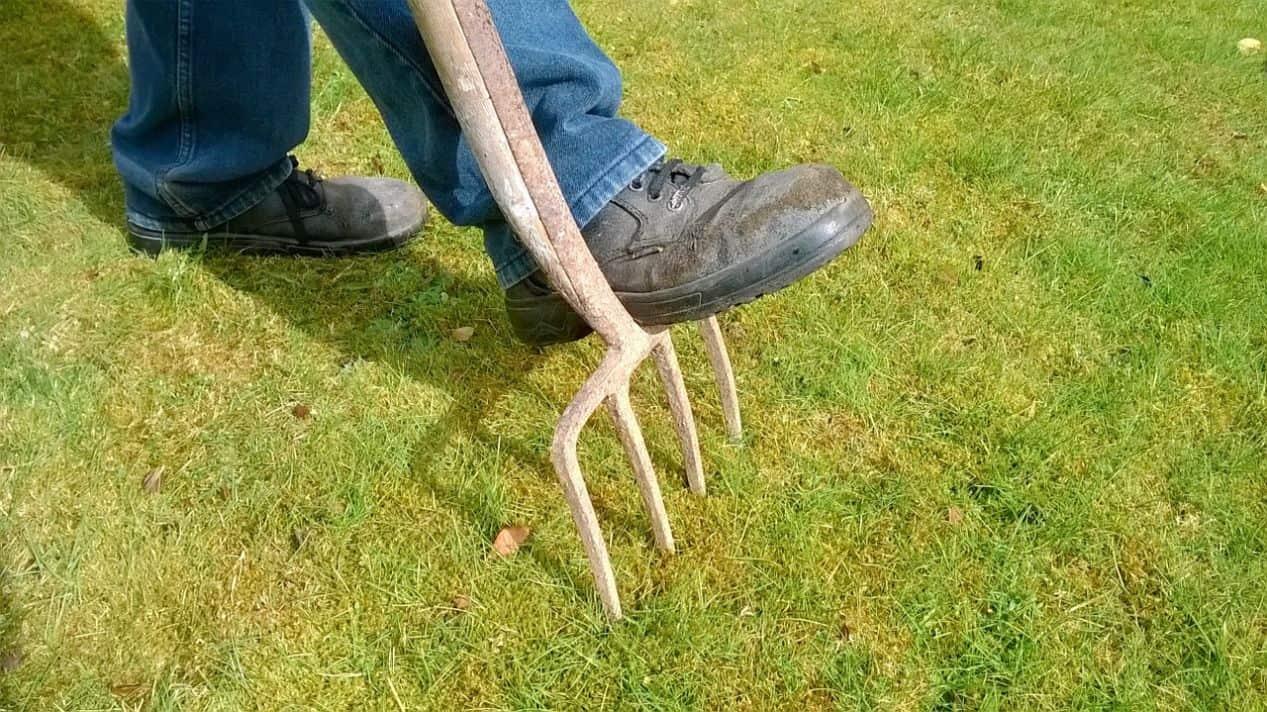 common-gardening-tools-uses-7-digging-fork
