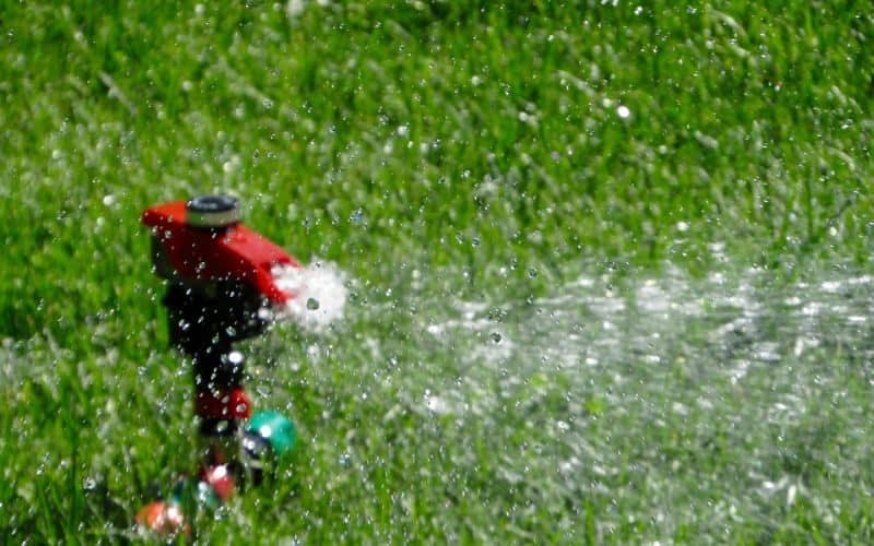 garden-lawn-care-tips-13-providing-your-grass-with-lots-of-water