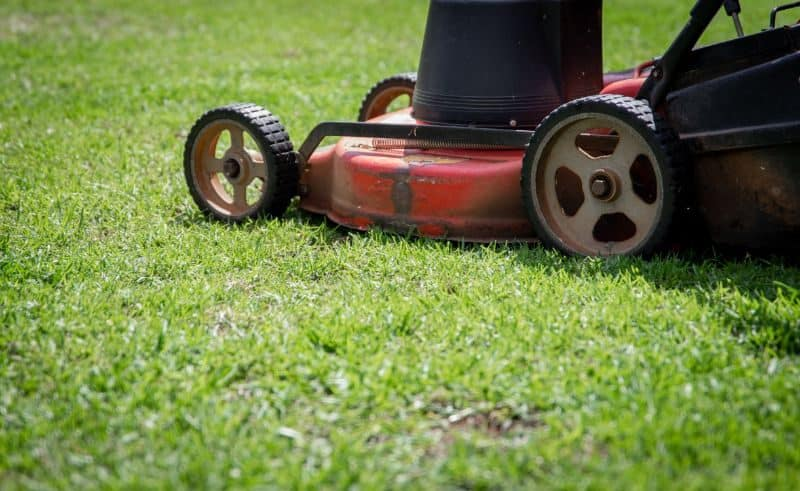 garden-lawn-care-tips-17-choose-the-right-lawn-mower