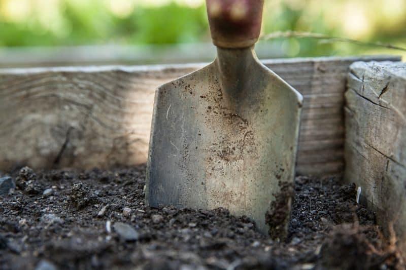 garden-lawn-care-tips-35-loosen-the-soil