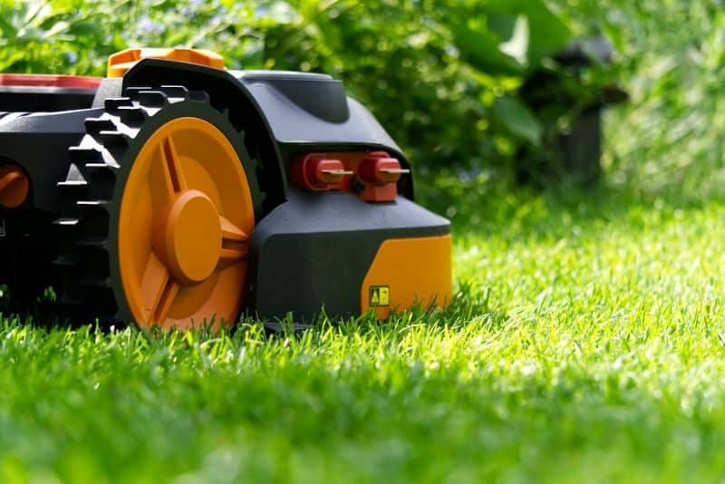 garden-lawn-care-tips-43-mow-when-lawn-is-dry