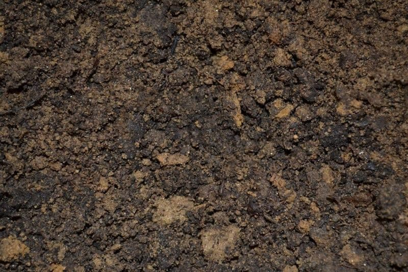garden-lawn-care-tips-6-have-a-permeable-soil