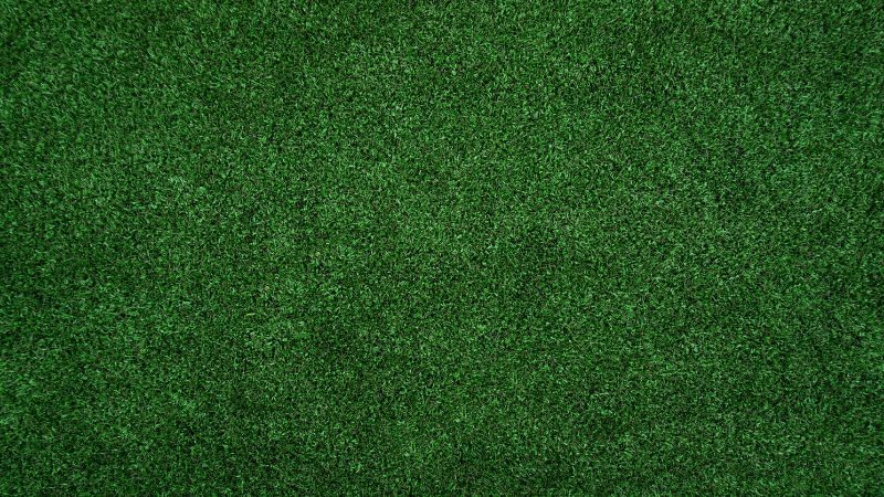 garden-lawn-care-tips-75-know-the-general-lawn-maintenance-rule