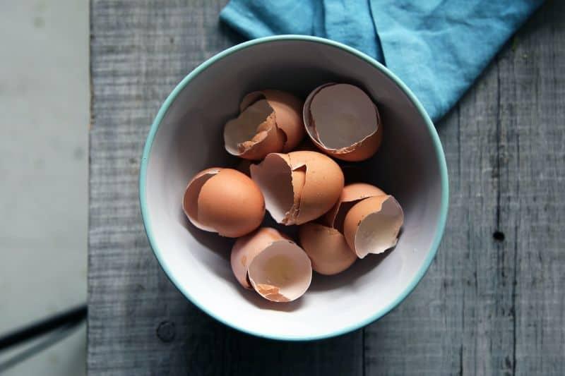 household-items-improve-garden-3-eggshells
