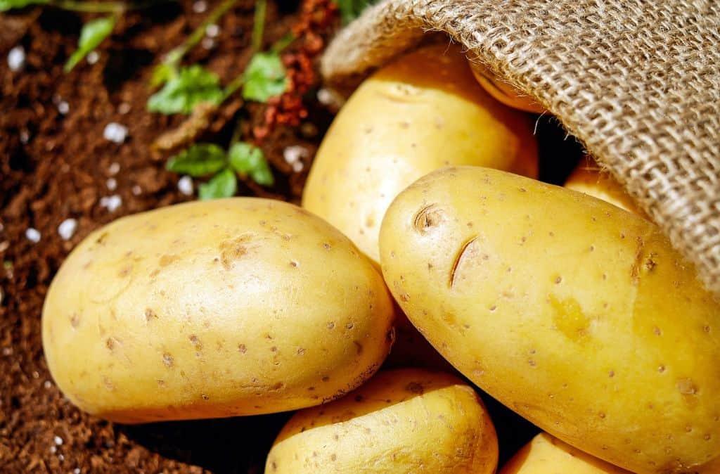indoor-crops-3-potatoes-pixabay
