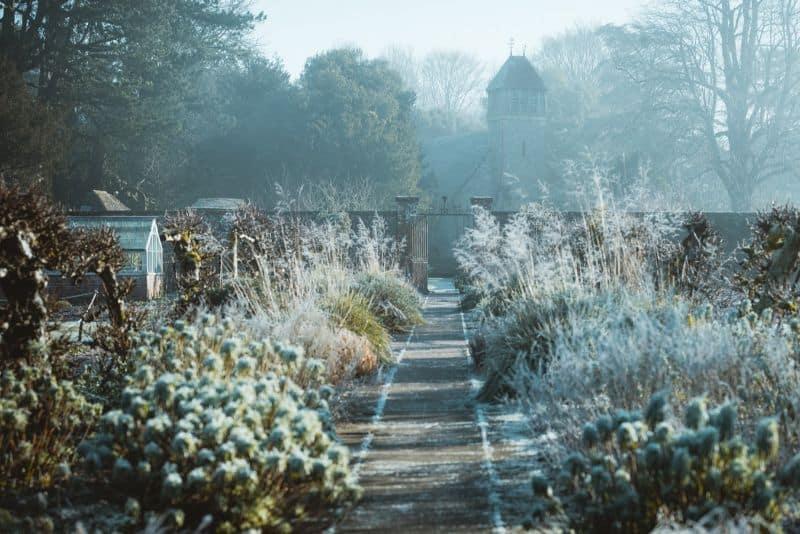 mistakes-garden-novices-should-avoid-6-weather-unsplash