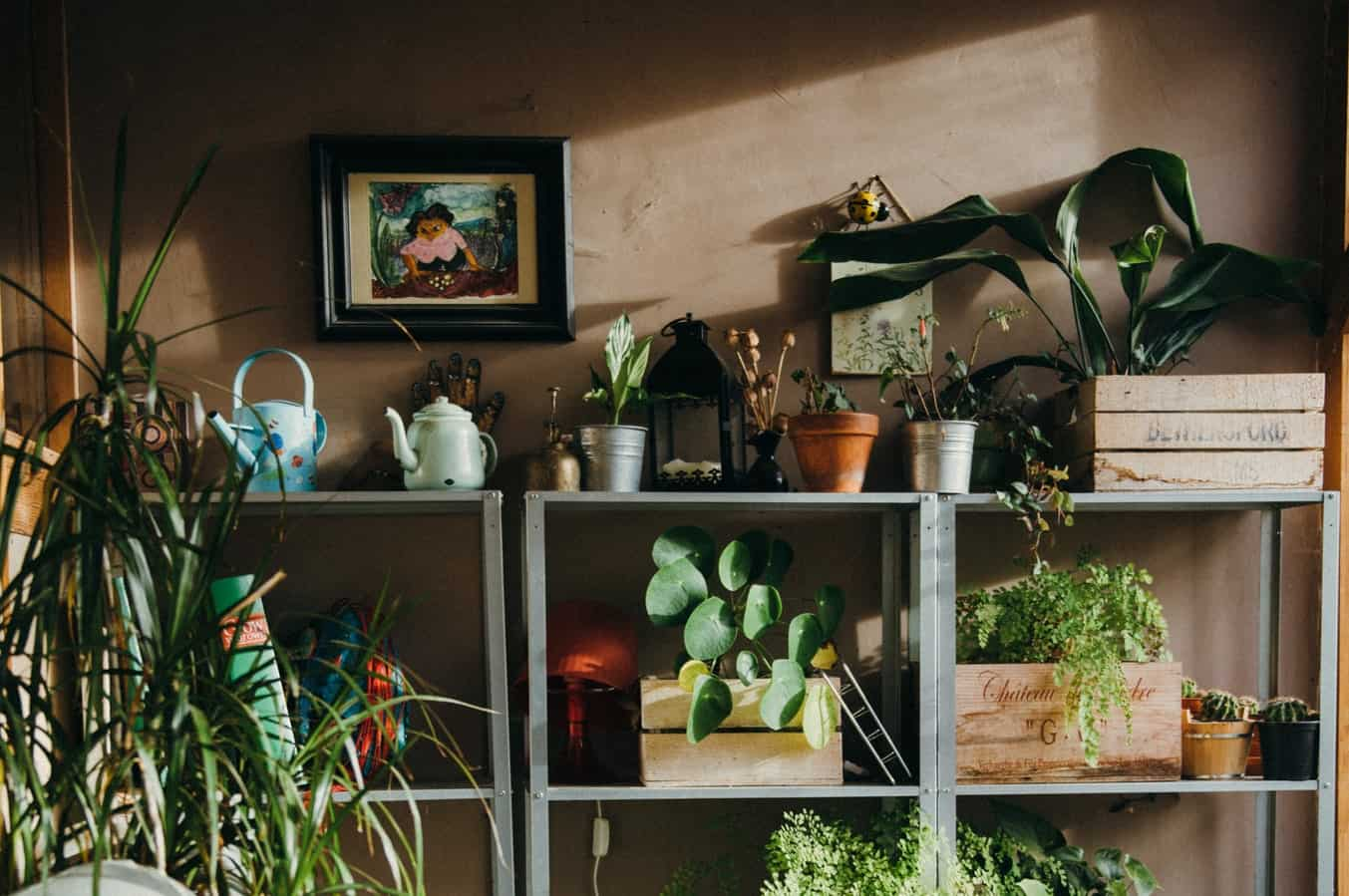5 Clever Ways to Organize Your Garden Shed