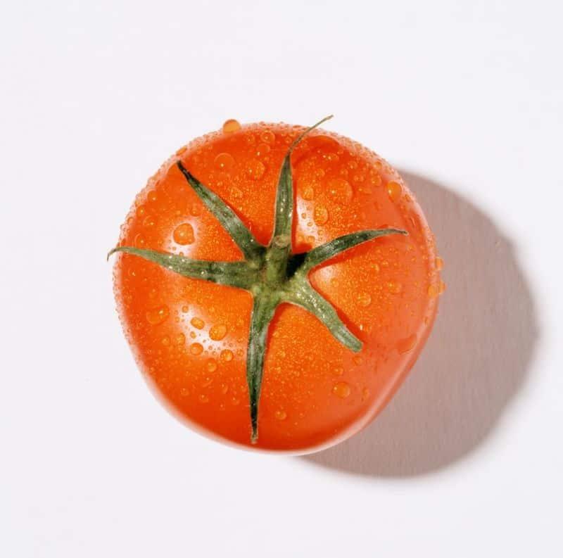plant-world-records-guide-5-tomato