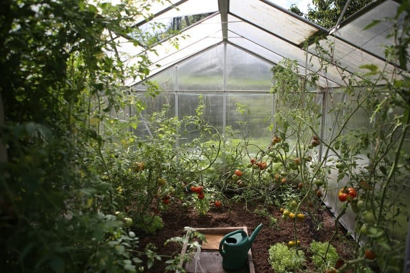 polycarbonate greenhouse advantages