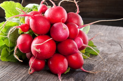 radish 10 Vegetables To Plant Now and Eat as an Exciting Winter Meal [Updated]