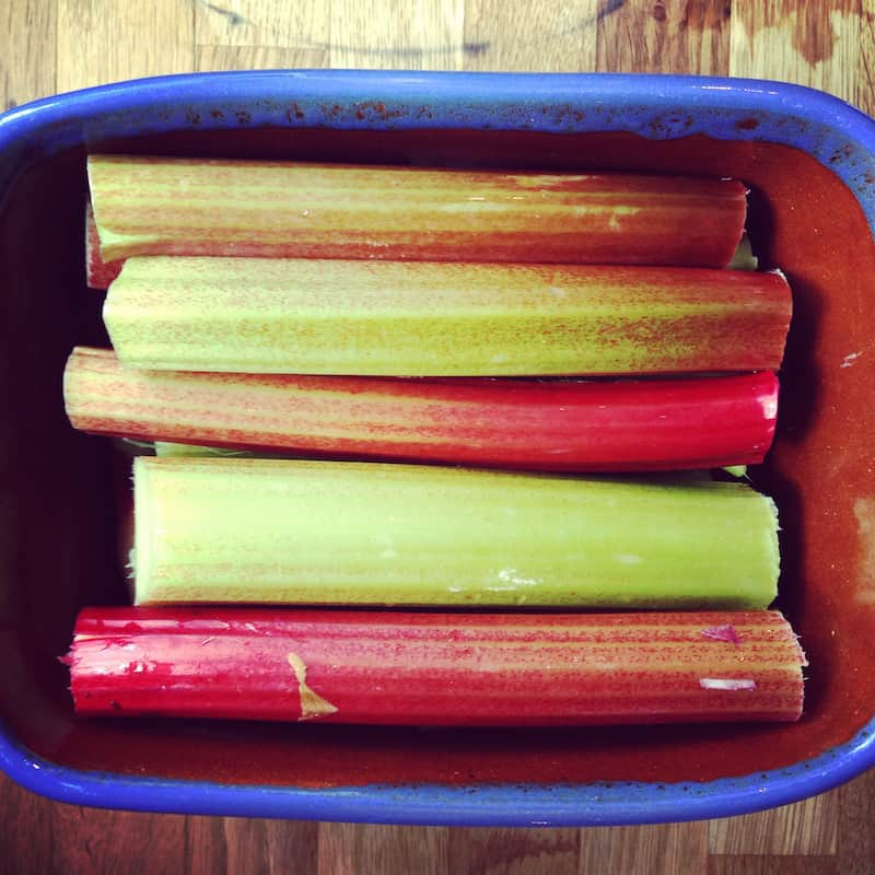 roasting rhubarb 20 Amazing Allotment Blogs