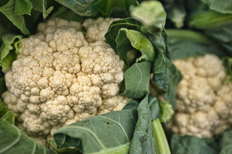 seven-plants-difficult-grow-2-cauliflower