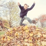 Become a Leaf Collector