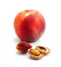 regrow peach
