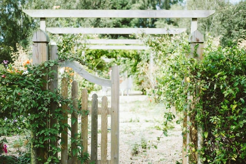 small-garden-ideas-budget-5-paint-your-fences