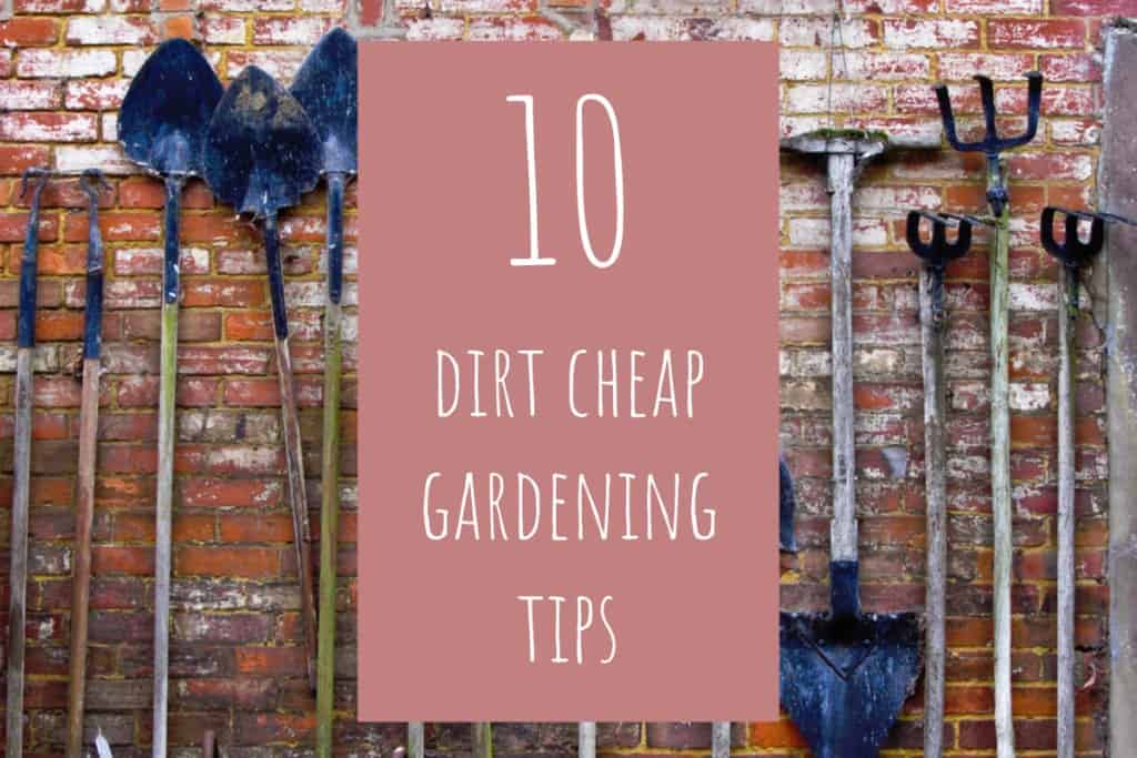 stencil.default 19 1 10 Dirt Cheap Gardening Tips