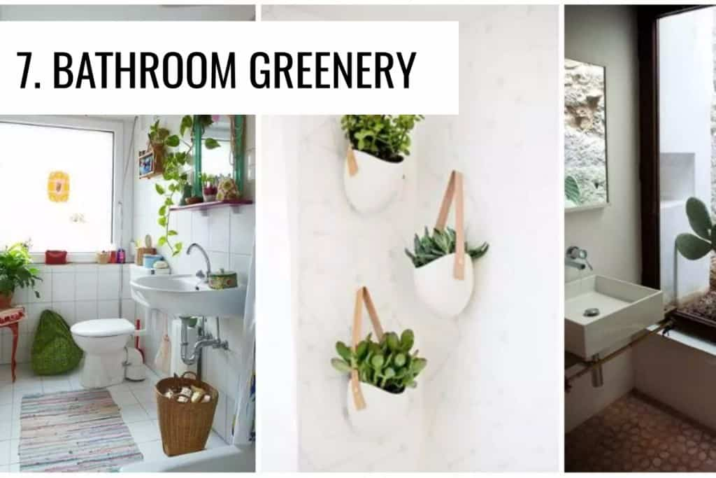 stencil.default 38 2 10 Creative Ways to Freshen up your Home with Plants