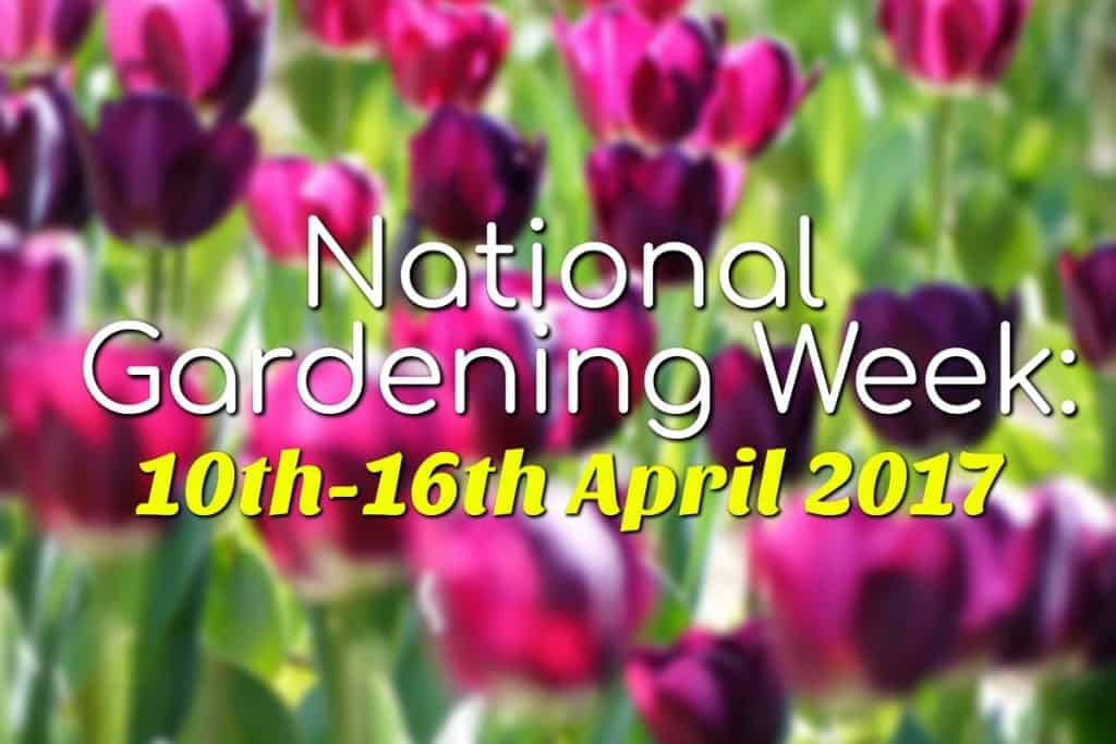 Fun Things to Do During National Gardening Week 2017
