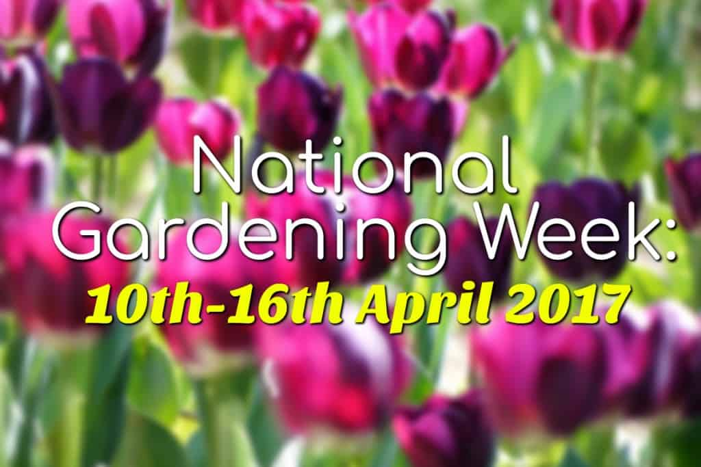 stencil.default 8 5 Fun Things to Do During National Gardening Week 2017