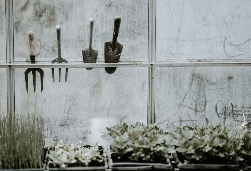 the-perfect-potting-shed-2-a-place-to-hang-your-tools
