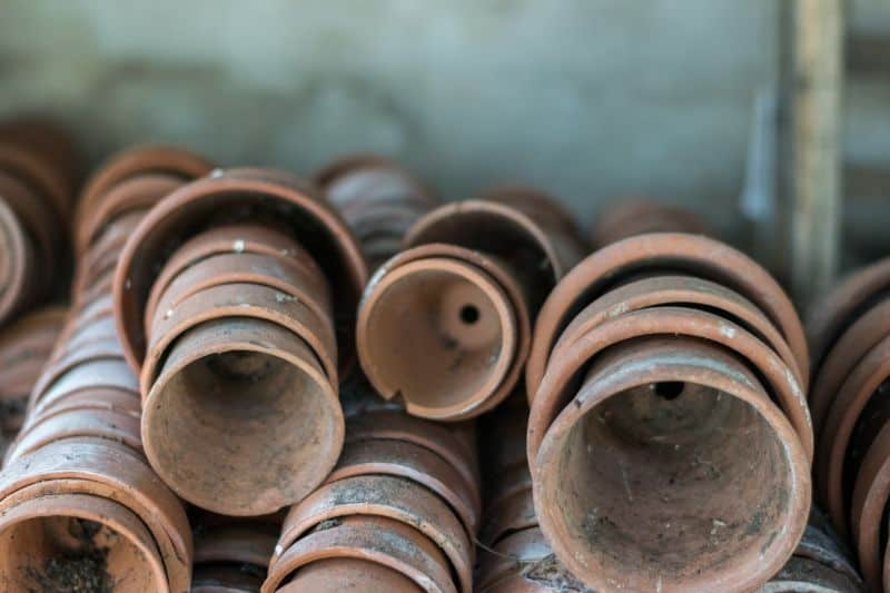 the-perfect-potting-shed-3-a-plenty-of-pots